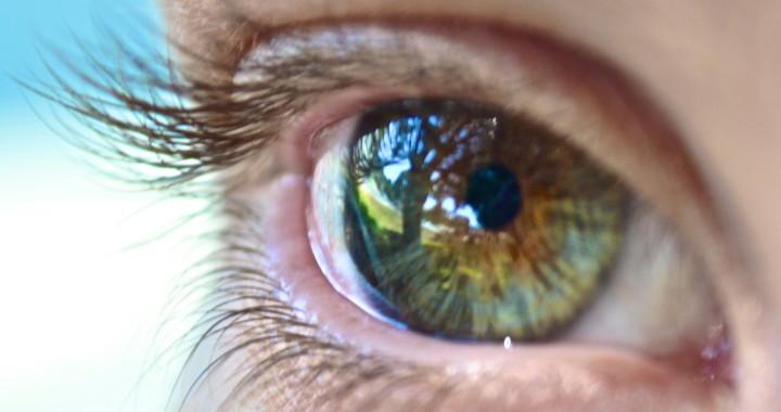 stockvault-eye-see-you-131584